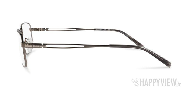 Lunettes de vue Charmant 10759 Titane gris - Vue de côté