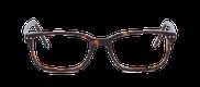 Lunettes de vue Happyview CHARLIE écaille - danio.store.product.image_view_face miniature